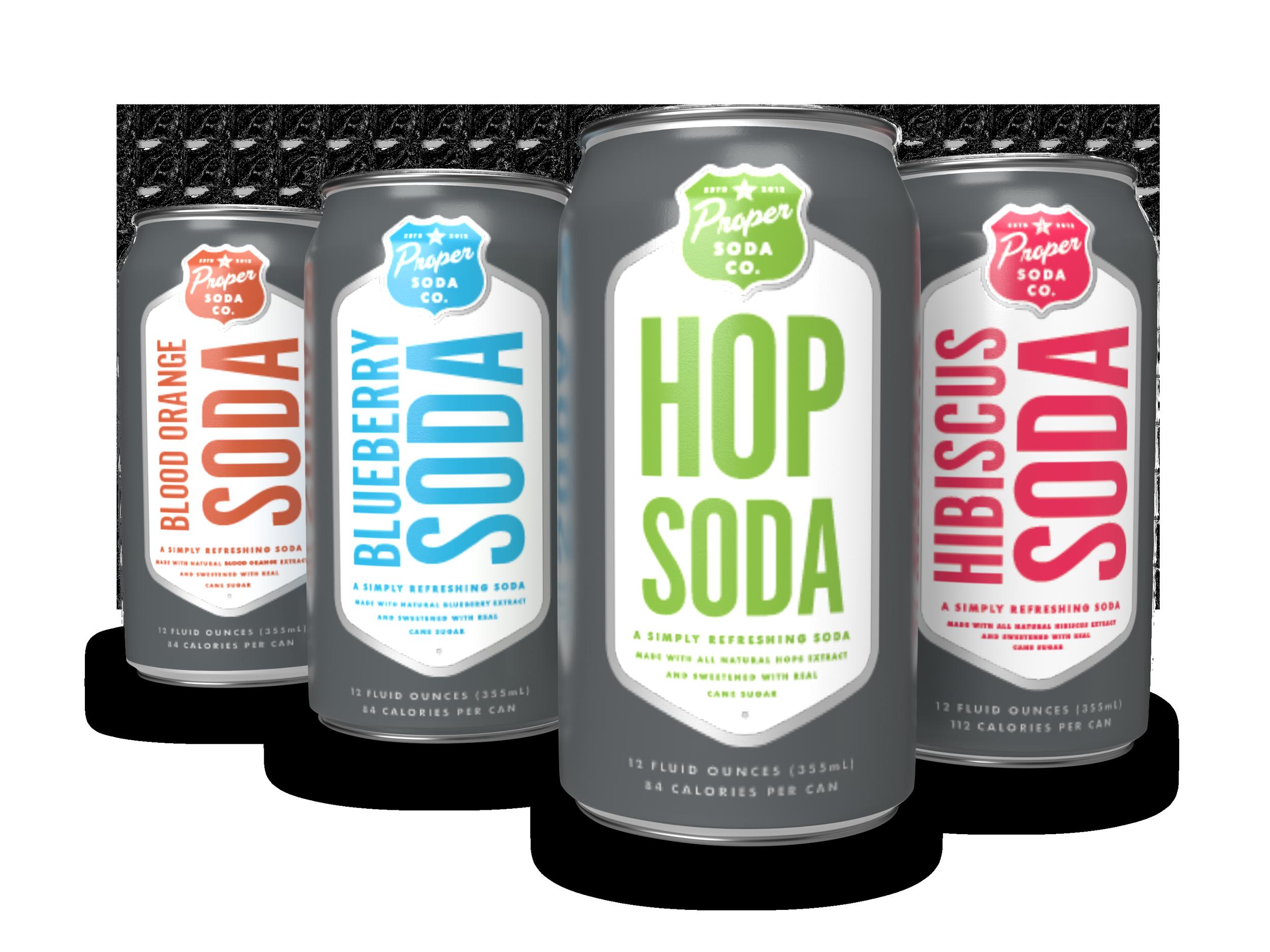 Proper-Soda---2020---Family--Pose